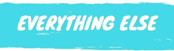 everything else 1